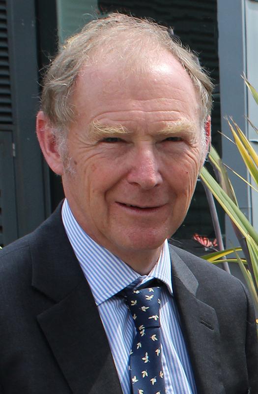 Dr David Pearson