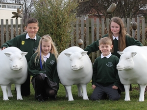 Children thrilled as life-size sheep delivered to schools