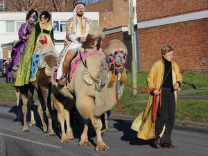 Camels will walk through streets of Leigh Park