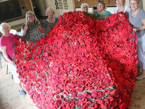 Poppy cascade to honour those who died in war